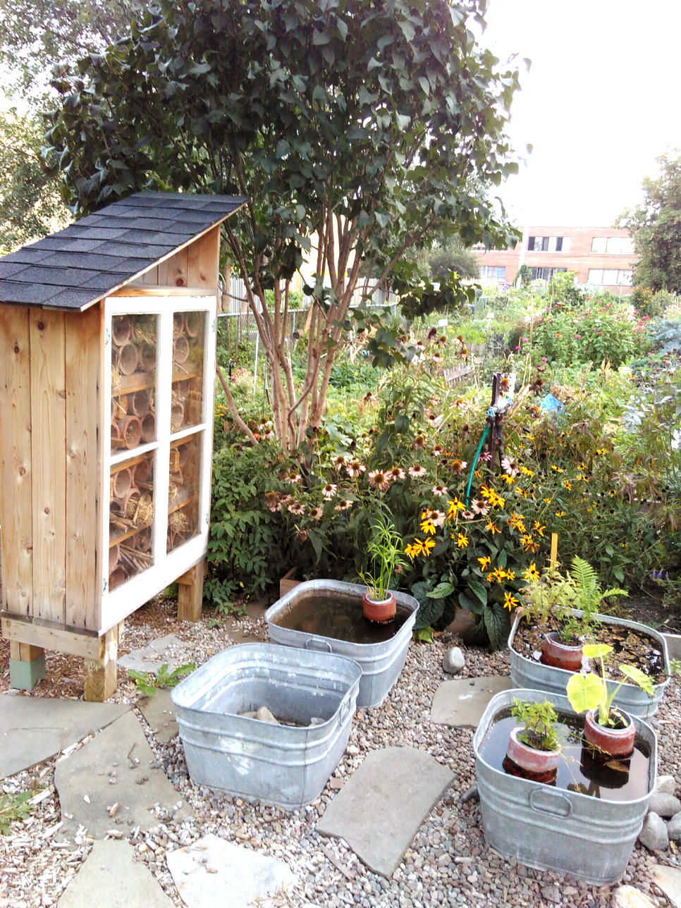 espace jeune du jardin communautaire basile patenaude un bel exemple de jardin p dagogique. Black Bedroom Furniture Sets. Home Design Ideas