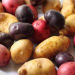 varietes-de-pomme-de-terre2